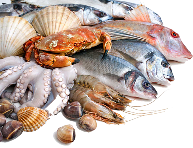 Nguồn dinh dưỡng dồi dào có từ hải sản-4