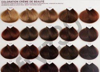 Bảng màu thuốc nhuộm tóc L'oreal