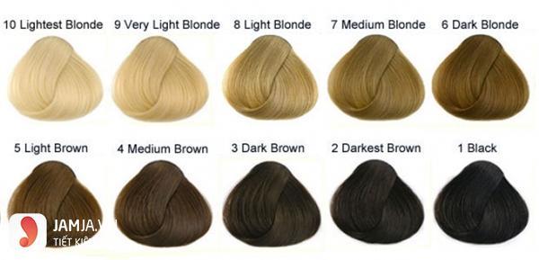 bảng màu nhuộm tóc vàng ảnh 1